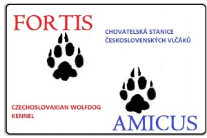 fortis_amicus